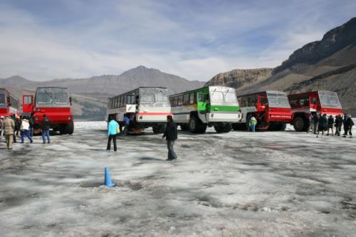 アサバスカ氷河観光